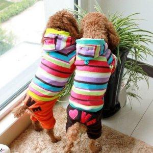 warm-dog-clothes
